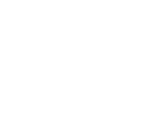 chamber of commerce member